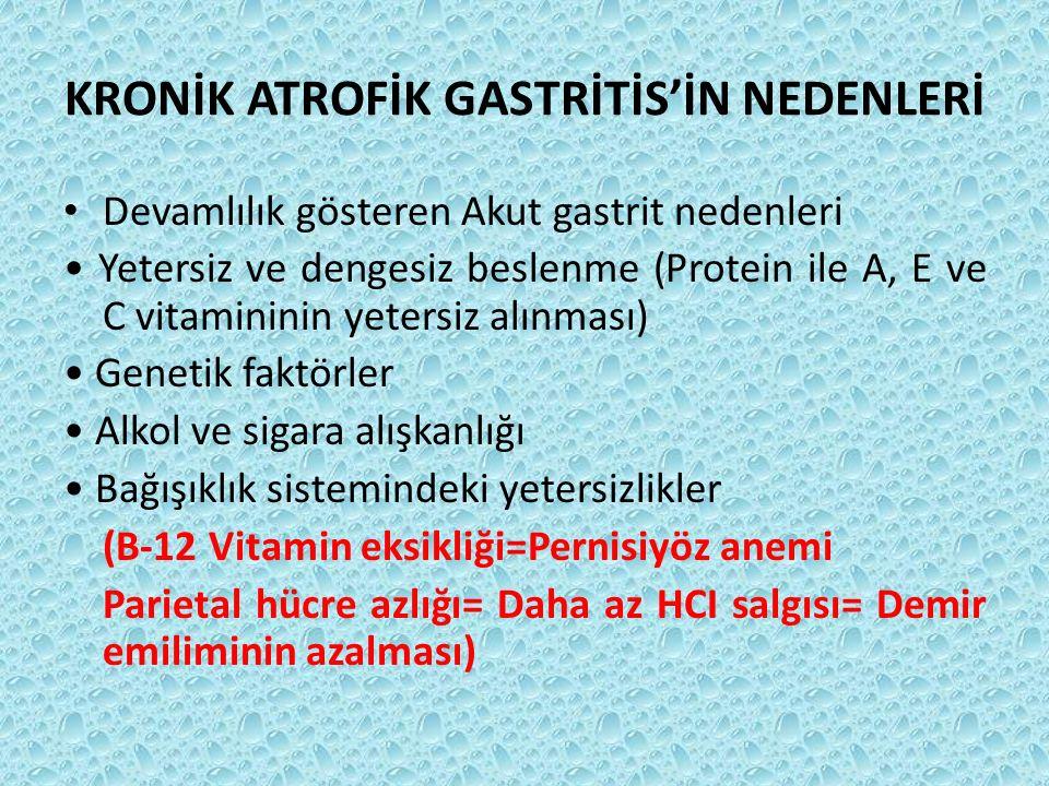 KRONİK ATROFİK GASTRİTİS'İN NEDENLERİ