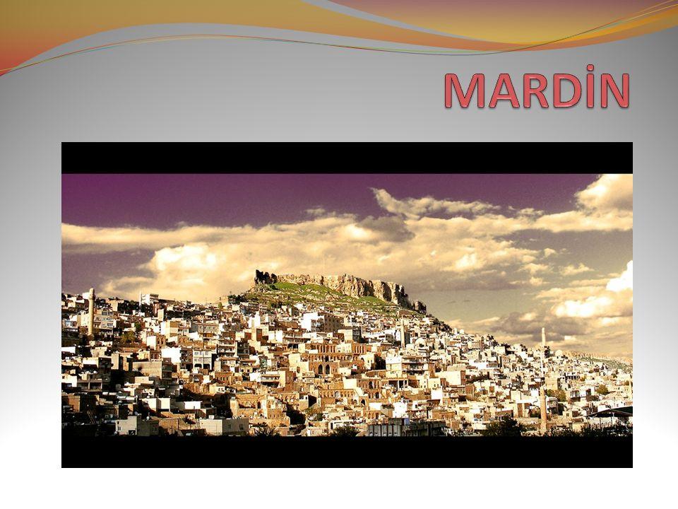 MARDİN