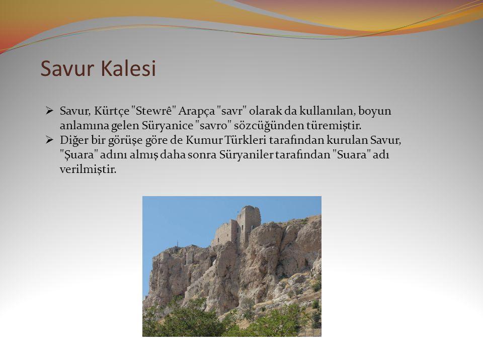 Savur Kalesi Savur, Kürtçe Stewrê Arapça savr olarak da kullanılan, boyun anlamına gelen Süryanice savro sözcüğünden türemiştir.