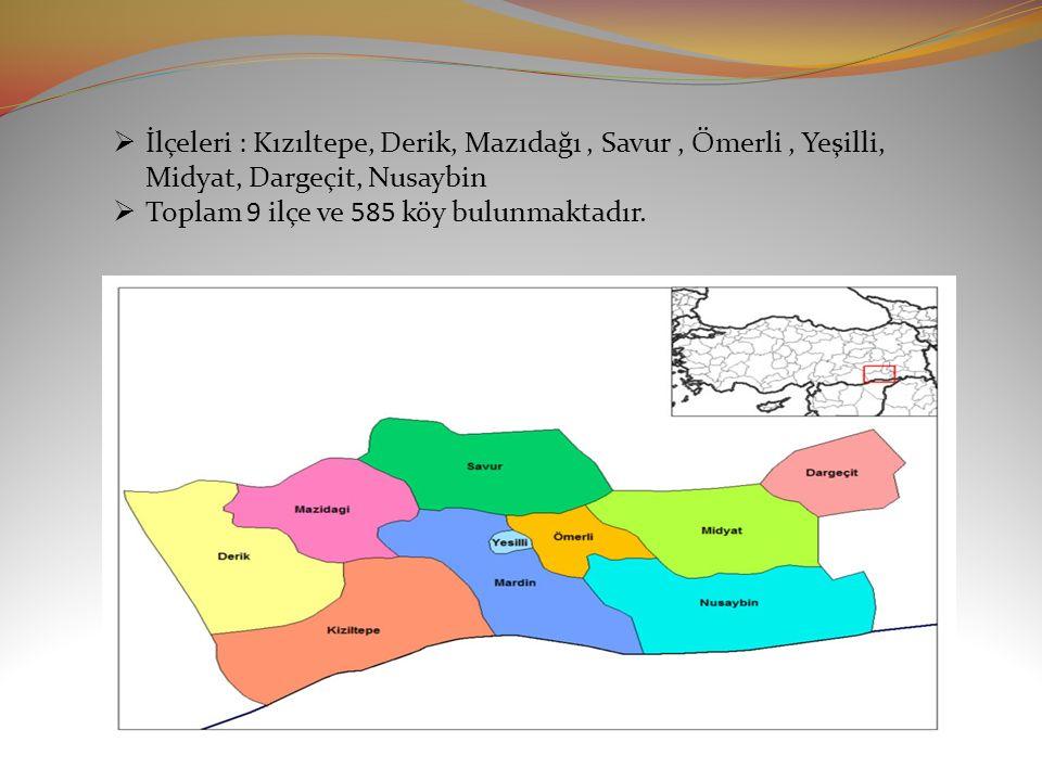İlçeleri : Kızıltepe, Derik, Mazıdağı , Savur , Ömerli , Yeşilli, Midyat, Dargeçit, Nusaybin