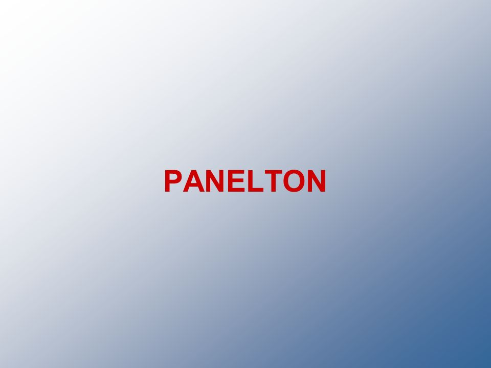 PANELTON