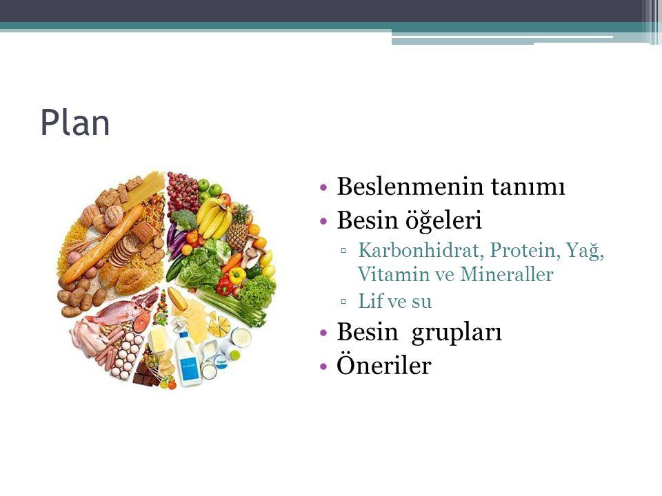 Plan Beslenmenin tanımı Besin öğeleri Besin grupları Öneriler