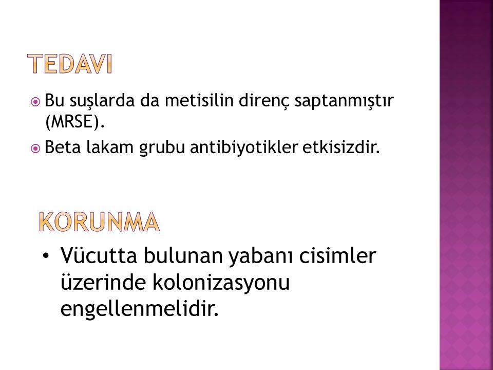 Tedavi Bu suşlarda da metisilin direnç saptanmıştır (MRSE). Beta lakam grubu antibiyotikler etkisizdir.