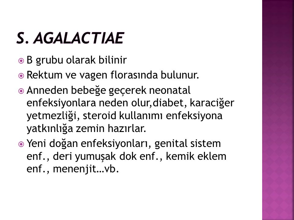 S. agalactiae B grubu olarak bilinir
