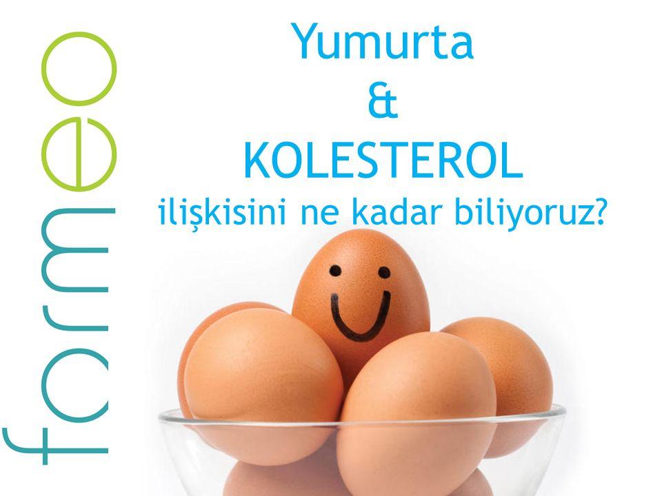 Yumurta & KOLESTEROL ilişkisini ne kadar biliyoruz