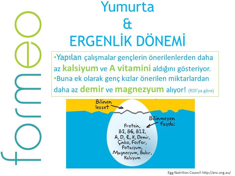Yumurta & ERGENLİK DÖNEMİ