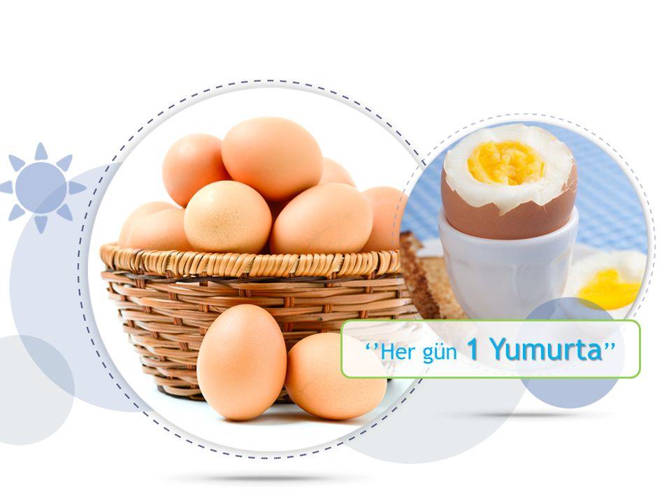 ''Her gün 1 Yumurta''