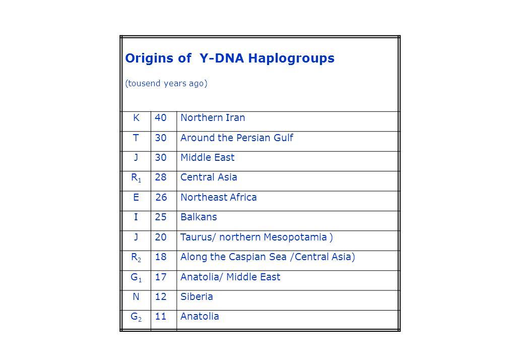 Origins of Y-DNA Haplogroups