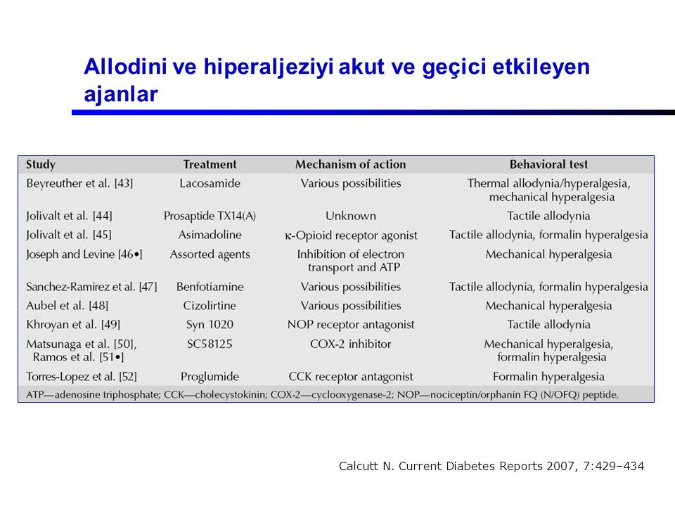 Allodini ve hiperaljeziyi akut ve geçici etkileyen ajanlar