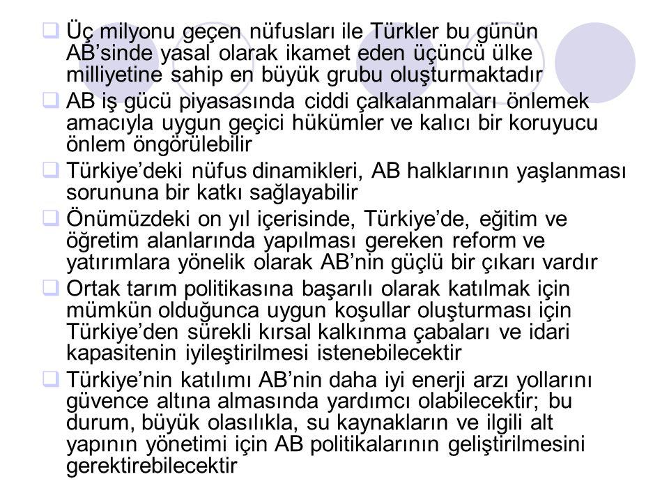 Üç milyonu geçen nüfusları ile Türkler bu günün AB'sinde yasal olarak ikamet eden üçüncü ülke milliyetine sahip en büyük grubu oluşturmaktadır