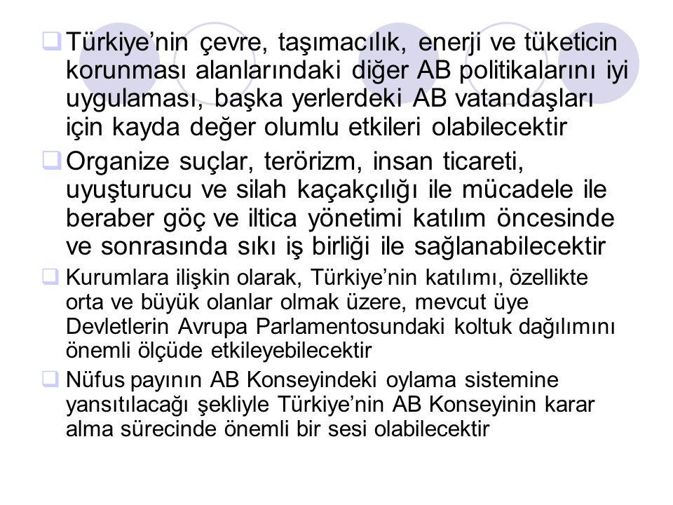 Türkiye'nin çevre, taşımacılık, enerji ve tüketicin korunması alanlarındaki diğer AB politikalarını iyi uygulaması, başka yerlerdeki AB vatandaşları için kayda değer olumlu etkileri olabilecektir