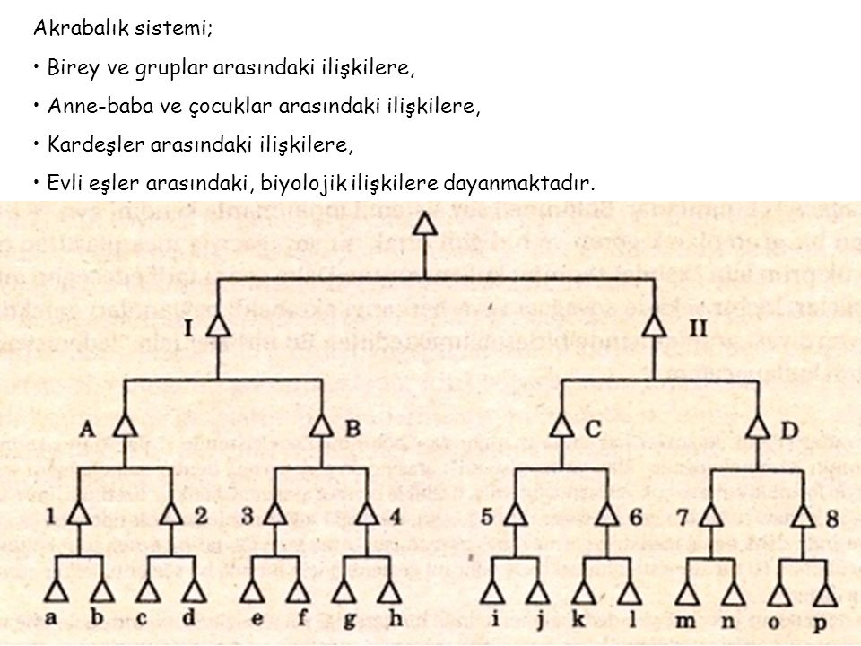 Akrabalık sistemi; • Birey ve gruplar arasındaki ilişkilere, • Anne-baba ve çocuklar arasındaki ilişkilere,