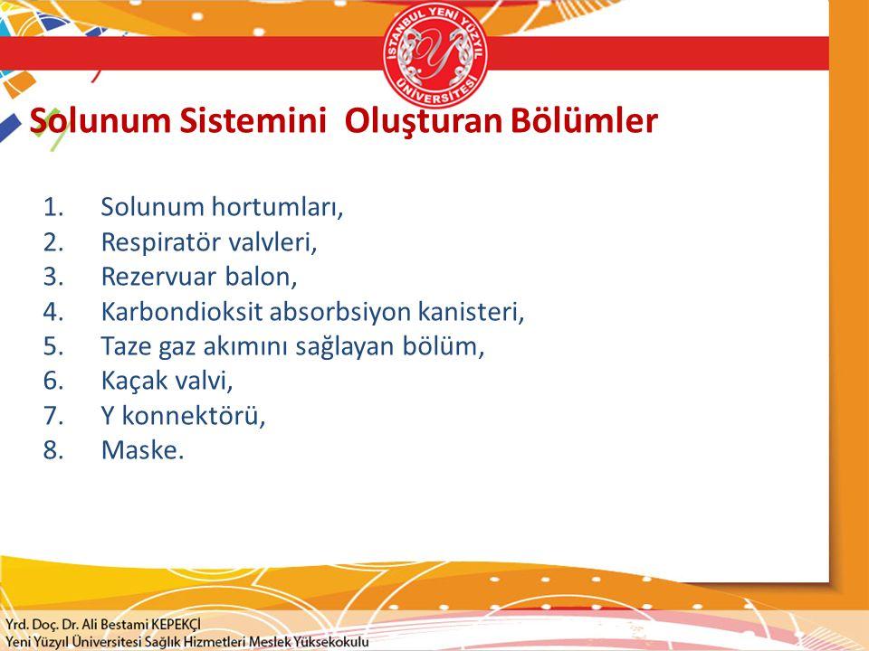Solunum Sistemini Oluşturan Bölümler