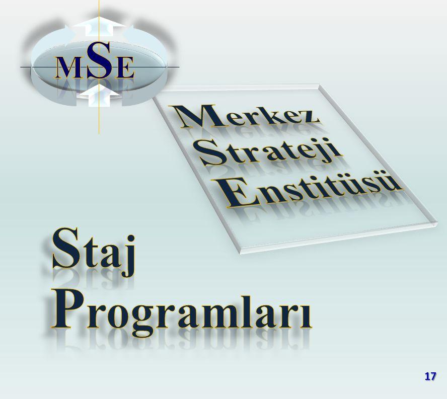 MSE Merkez Strateji Enstitüsü Staj Programları 17