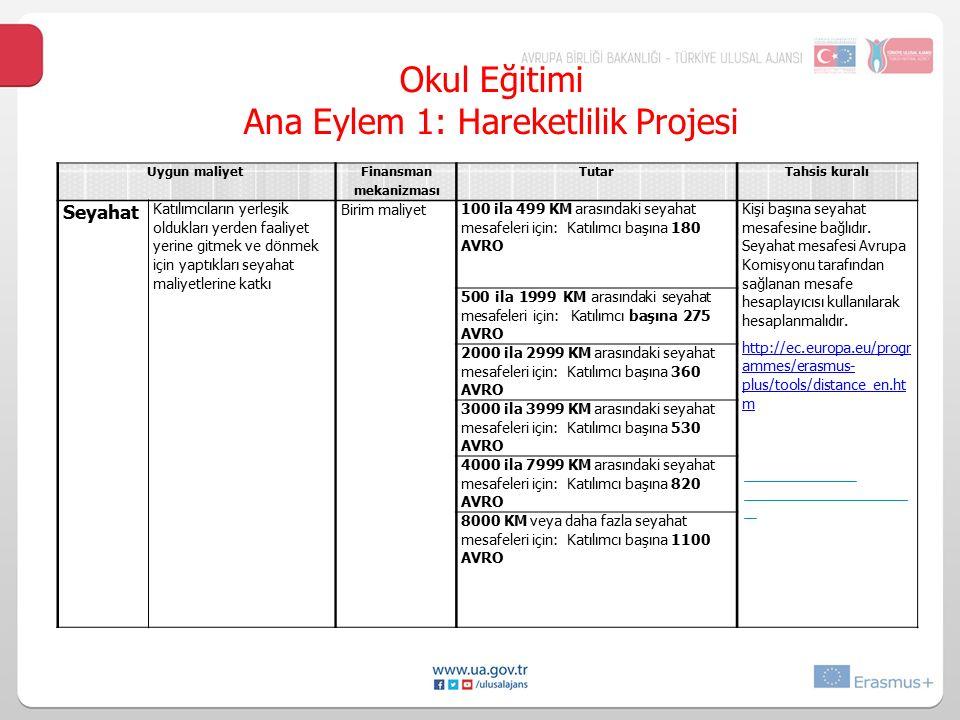 Ana Eylem 1: Hareketlilik Projesi