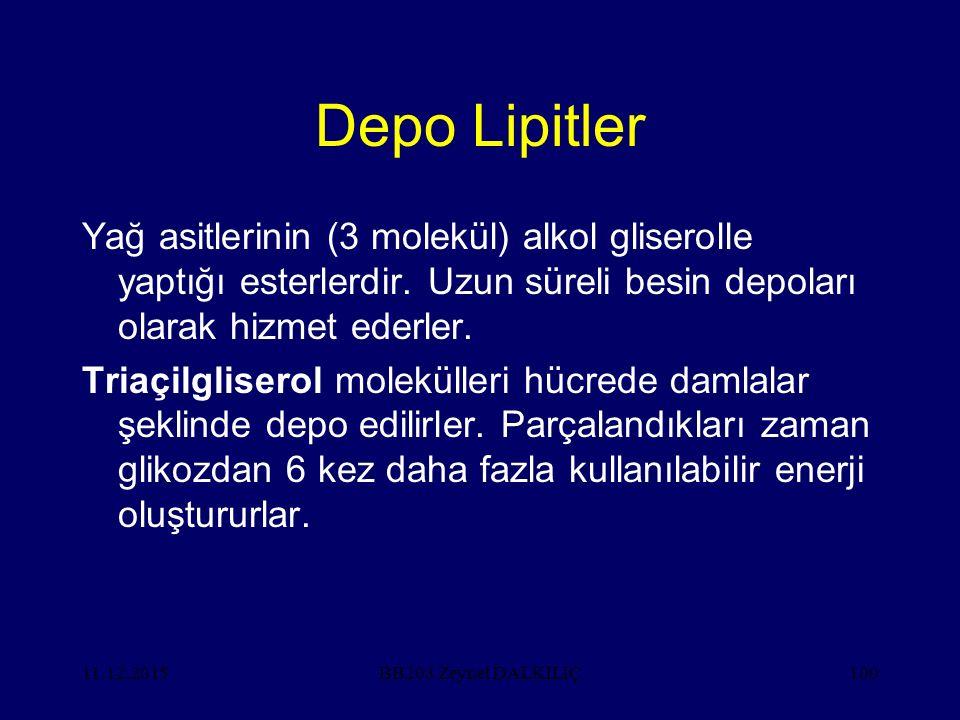 Depo Lipitler Yağ asitlerinin (3 molekül) alkol gliserolle yaptığı esterlerdir. Uzun süreli besin depoları olarak hizmet ederler.