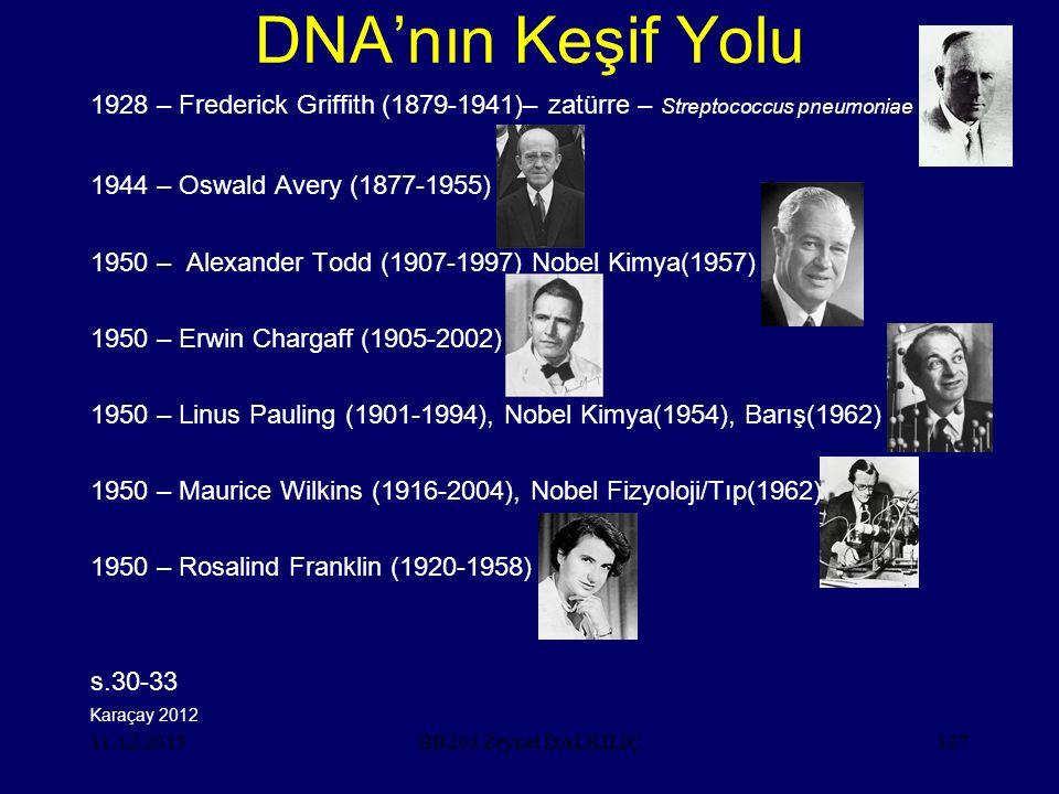 DNA'nın Keşif Yolu 1928 – Frederick Griffith (1879-1941)– zatürre – Streptococcus pneumoniae. 1944 – Oswald Avery (1877-1955)