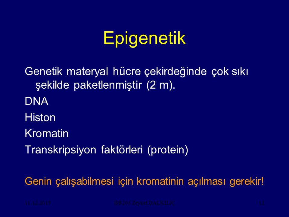 Epigenetik Genetik materyal hücre çekirdeğinde çok sıkı şekilde paketlenmiştir (2 m). DNA. Histon.