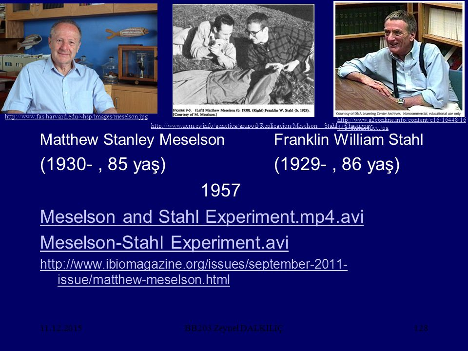Meselson and Stahl Experiment.mp4.avi Meselson-Stahl Experiment.avi
