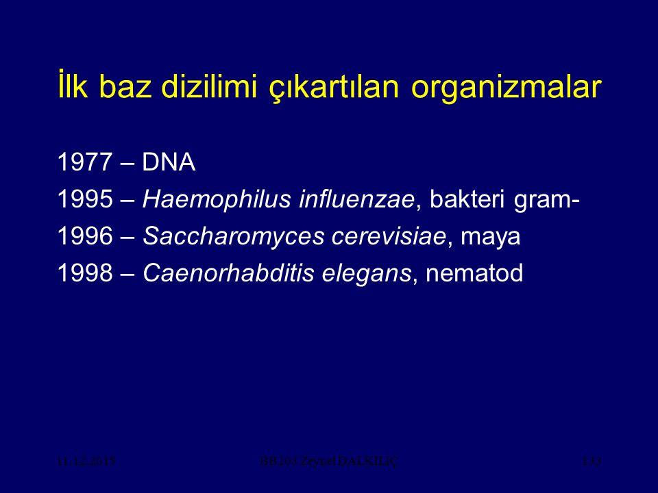 İlk baz dizilimi çıkartılan organizmalar