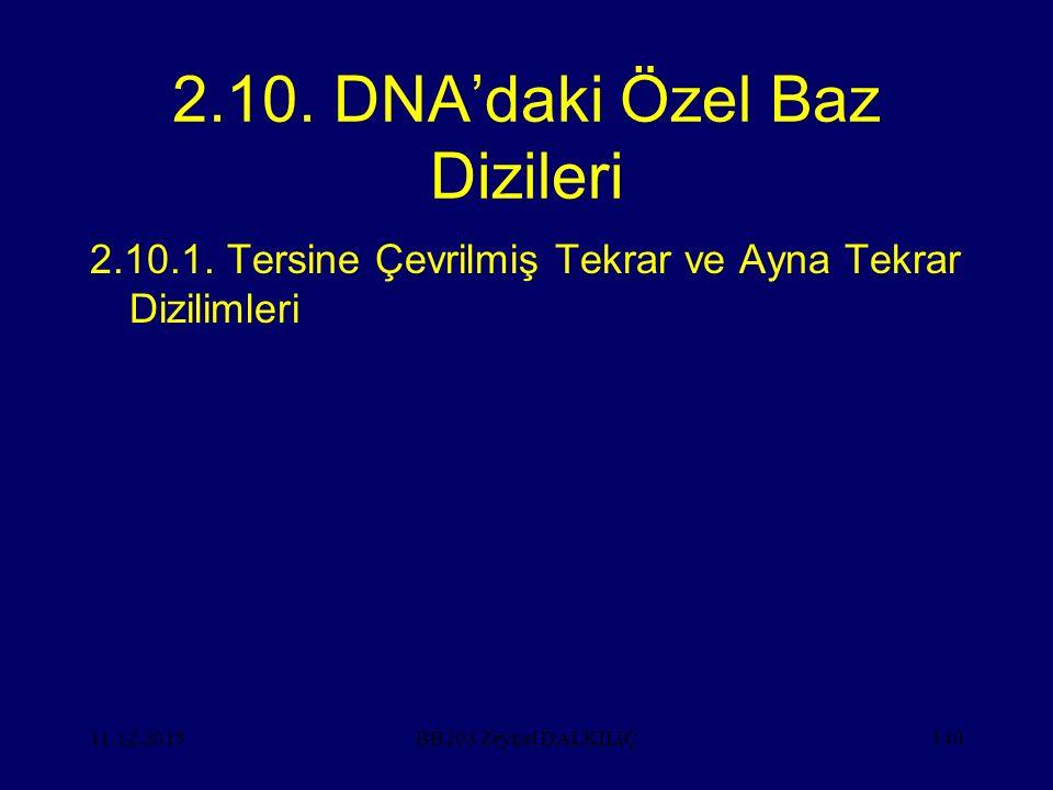 2.10. DNA'daki Özel Baz Dizileri