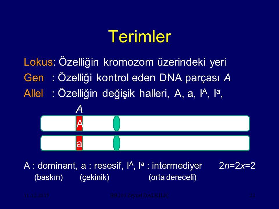 Terimler Lokus: Özelliğin kromozom üzerindeki yeri