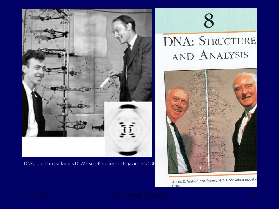 DNA_nın Babası James D. Watson Kampüste-BogaziciUniv18Nisan2011