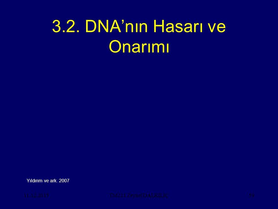 3.2. DNA'nın Hasarı ve Onarımı