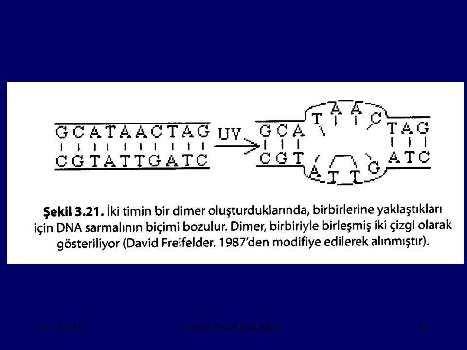 25.04.2017 BB408 Zeynel DALKILIÇ