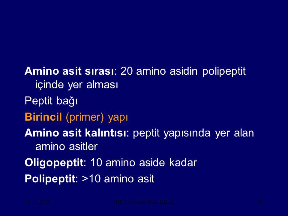 Amino asit sırası: 20 amino asidin polipeptit içinde yer alması