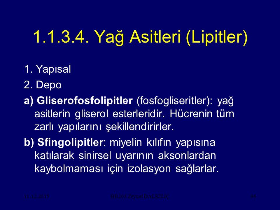 1.1.3.4. Yağ Asitleri (Lipitler)