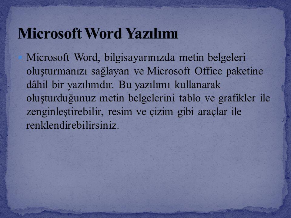 Microsoft Word Yazılımı