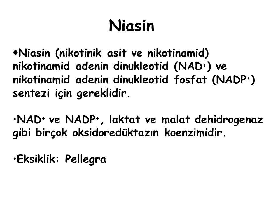 Niasin Niasin (nikotinik asit ve nikotinamid) nikotinamid adenin dinukleotid (NAD+) ve. nikotinamid.