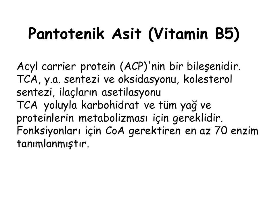Pantotenik Asit (Vitamin B5)