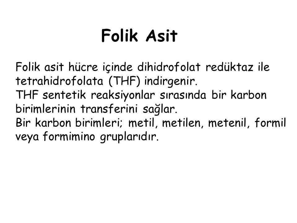 Folik Asit Folik asit hücre içinde dihidrofolat redüktaz ile