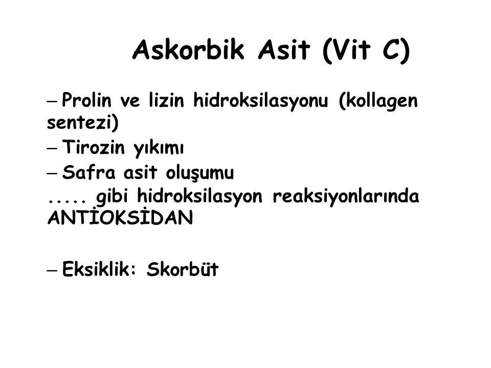 Askorbik Asit (Vit C) Prolin ve lizin hidroksilasyonu (kollagen