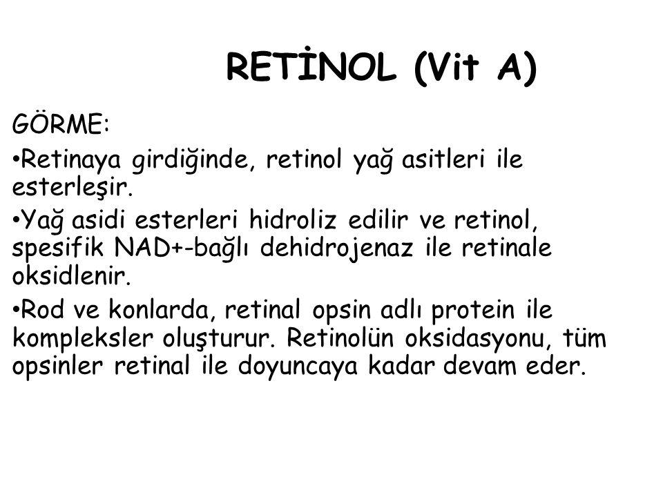 RETİNOL (Vit A) GÖRME: Retinaya girdiğinde, retinol yağ asitleri ile esterleşir.