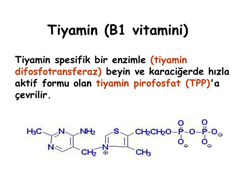 Tiyamin (B1 vitamini)