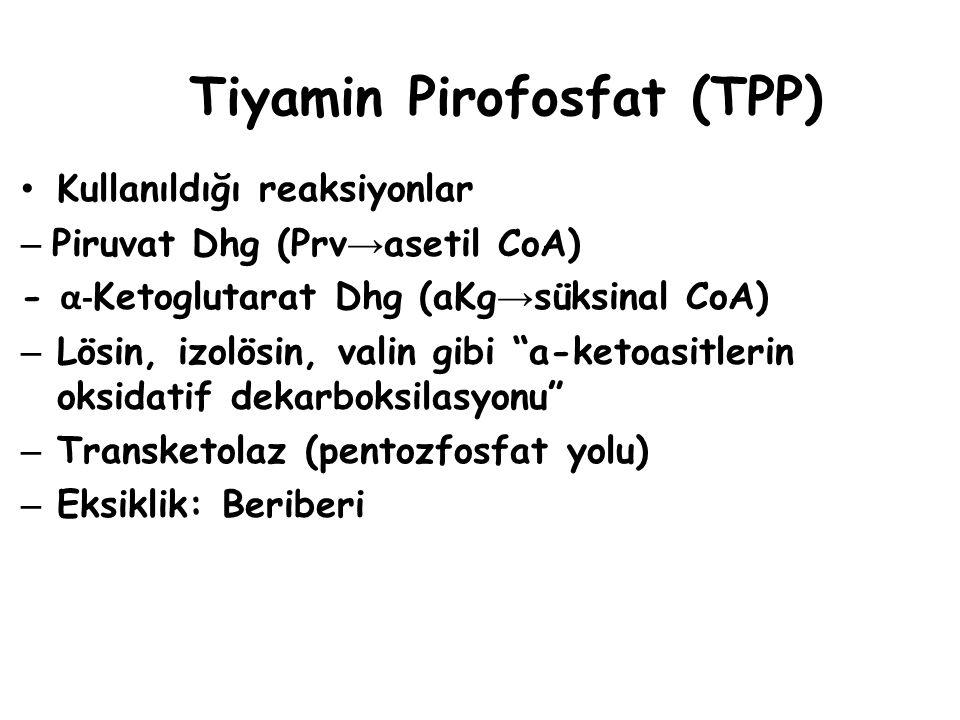 Tiyamin Pirofosfat (TPP)