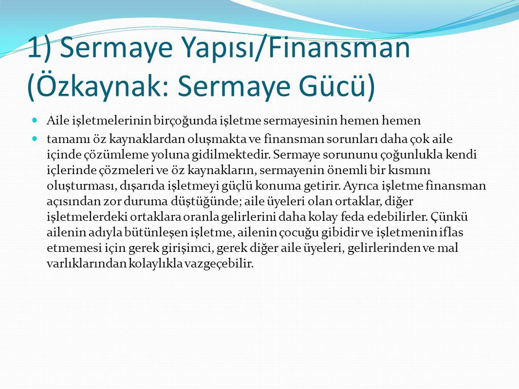 1) Sermaye Yapısı/Finansman (Özkaynak: Sermaye Gücü)