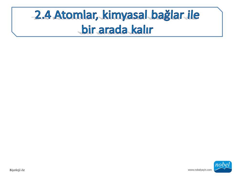 2.4 Atomlar, kimyasal bağlar ile bir arada kalır