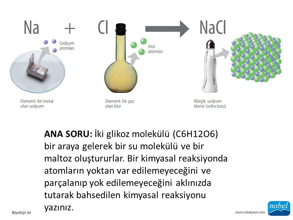 ANA SORU: İki glikoz molekülü (C6H12O6) bir araya gelerek bir su molekülü ve bir maltoz oluştururlar.