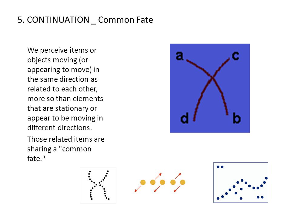 5. CONTINUATION _ Common Fate