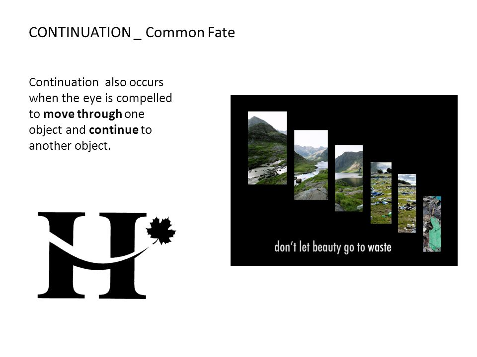 CONTINUATION _ Common Fate