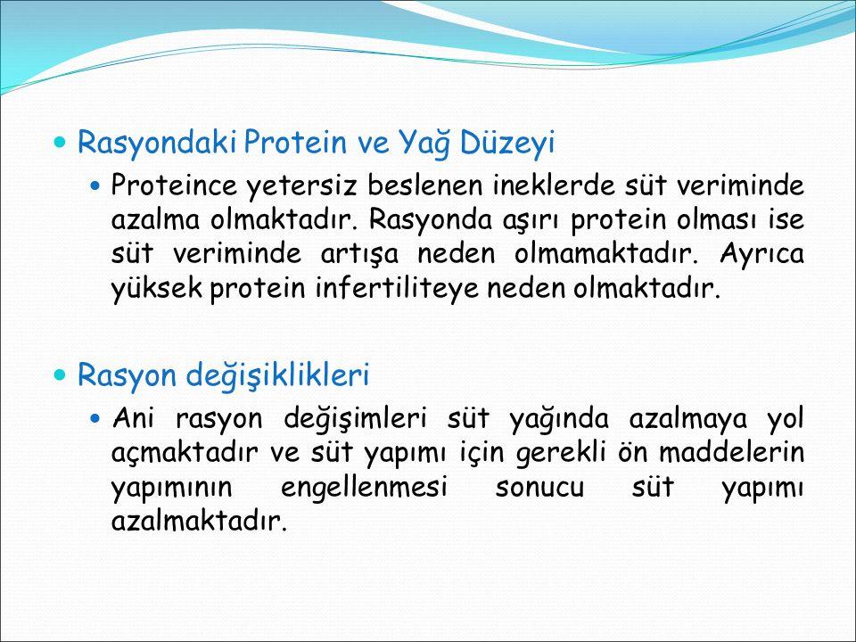 Rasyondaki Protein ve Yağ Düzeyi