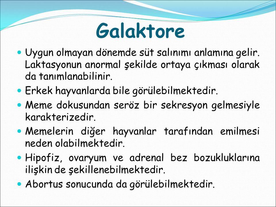 Galaktore Uygun olmayan dönemde süt salınımı anlamına gelir. Laktasyonun anormal şekilde ortaya çıkması olarak da tanımlanabilinir.