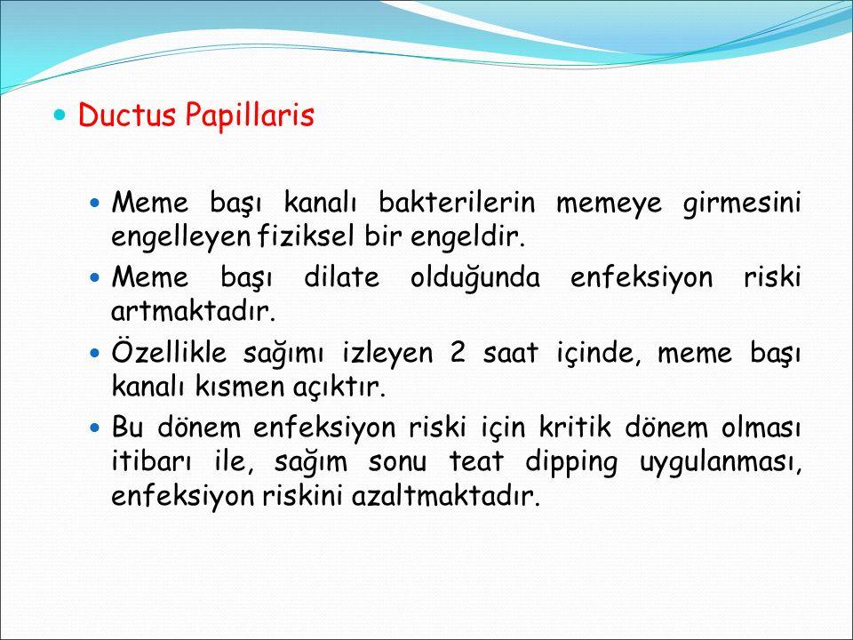 Ductus Papillaris Meme başı kanalı bakterilerin memeye girmesini engelleyen fiziksel bir engeldir.