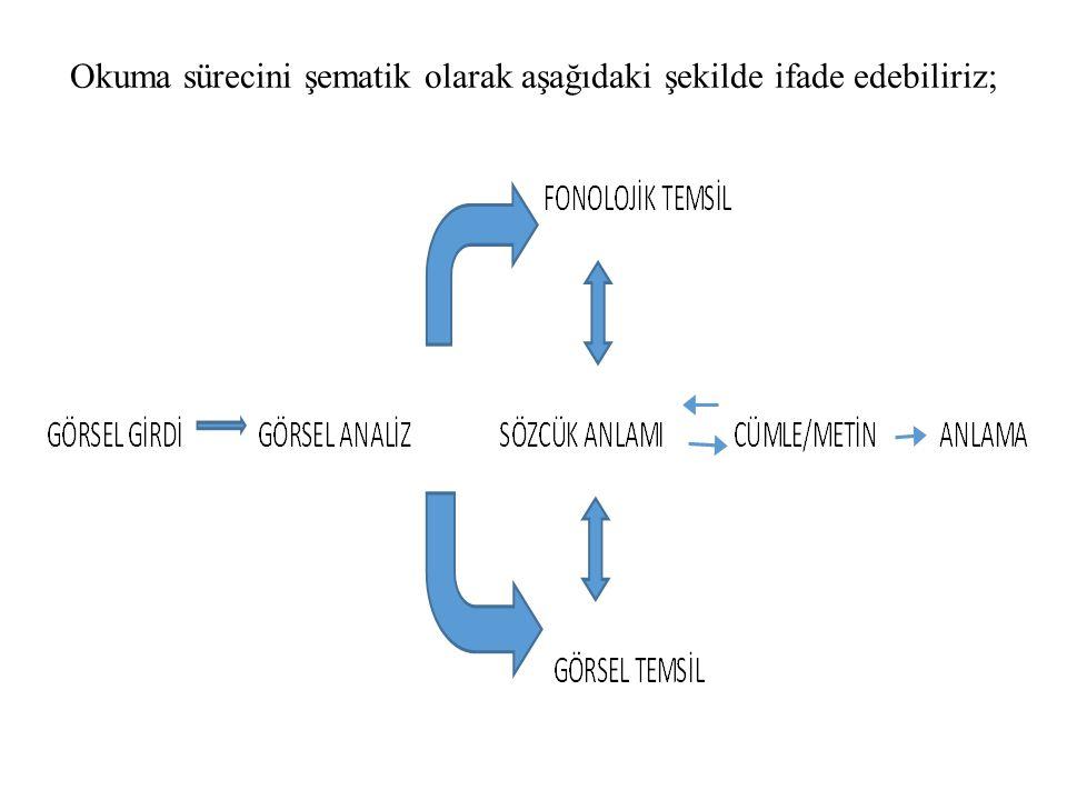 Okuma sürecini şematik olarak aşağıdaki şekilde ifade edebiliriz;