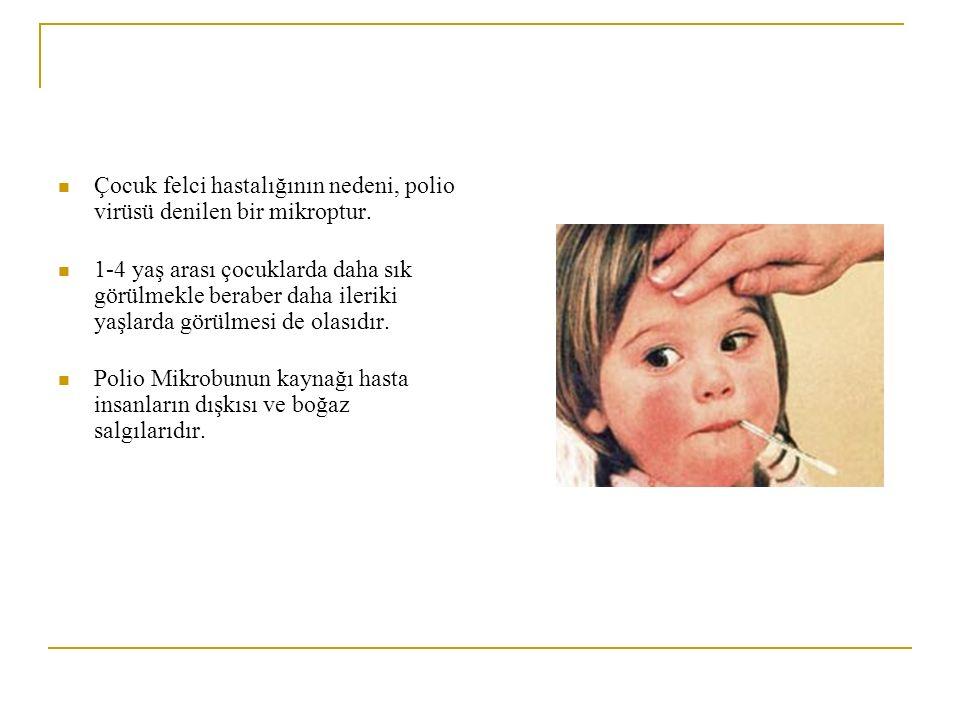 Çocuk felci hastalığının nedeni, polio virüsü denilen bir mikroptur.