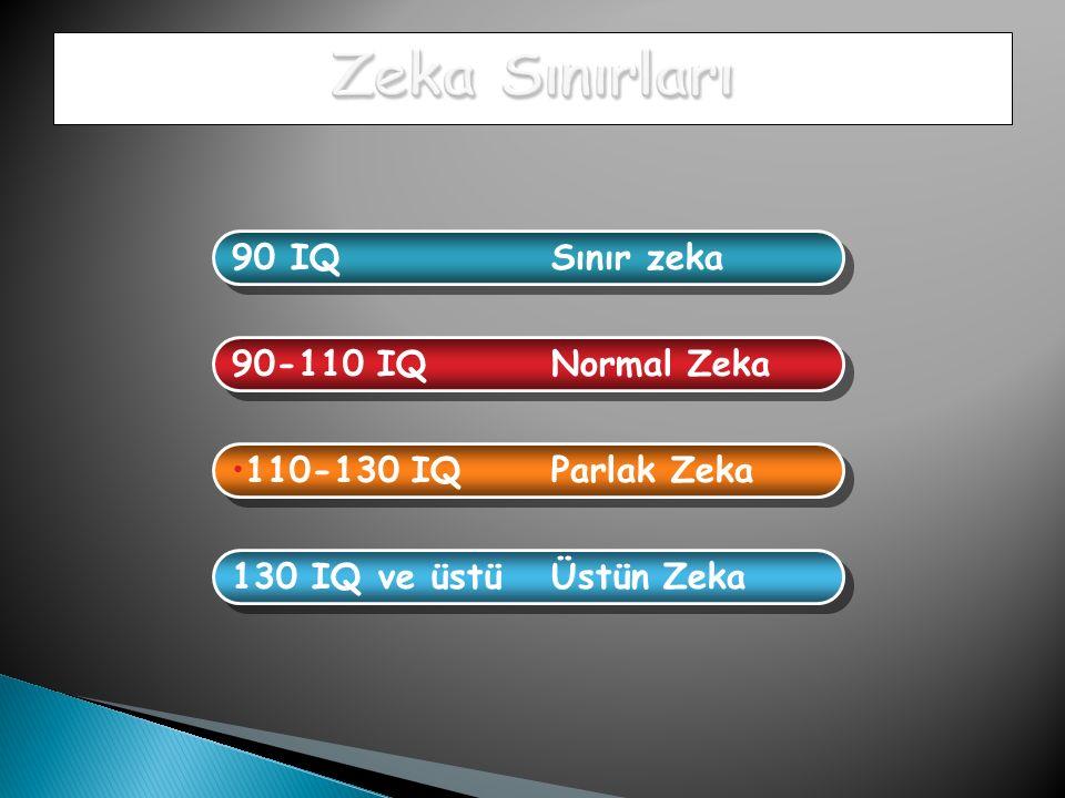 Zeka Sınırları 90 IQ Sınır zeka 90-110 IQ Normal Zeka
